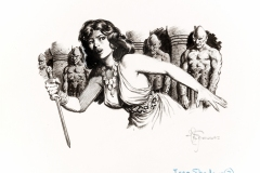 Mark-Schultz-Conan-of-Cimmeria-1932-1933-Vol-1